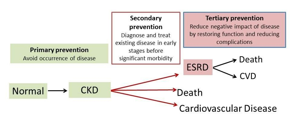 Kidney Disease Prevention Kidney Health Research Collaborative